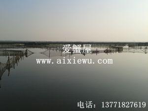 阳澄湖养殖水域